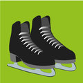 Skates black on green background Royalty Free Stock Photo