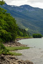 Skeena River shoreline in British Columbia, Canada Royalty Free Stock Photo