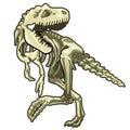 Skeleton of classic prehistoric dinosaur. Vector