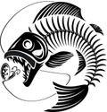 Skeleton Fish taking fishing lure Royalty Free Stock Photo