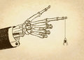 Skeleton hand with spider Royalty Free Stock Photo