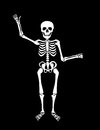 Skeleton a with his left hand bent as if he is holding something as a vector all parts are movable and able to be rearranged Royalty Free Stock Photo