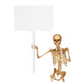Skeleton holding a sign isolated on white Stock Photo