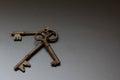 Skeleton key trio group of keys on a black background Stock Photography