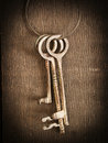 Skeleton keys Royalty Free Stock Photo