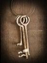Skeleton keys Royalty Free Stock Photo