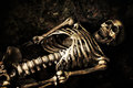 Skeleton lying in shallow grave at halloween Stock Photo