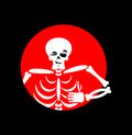 Skeleton showing thumbs up. Signs all right. Happy skull. Royalty Free Stock Photo