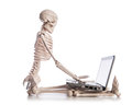 Skeleton working on laptop Stock Photos
