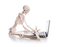 Skeleton working on the laptop Royalty Free Stock Photo