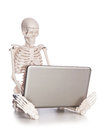 Skeleton working on laptop the Stock Images