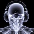 Skeleton X-Ray - DJ 3