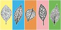 Skeletons of leaves vector abstract collage applique design Royalty Free Stock Images