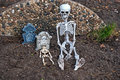 Skeletons and tombstones Stock Photos