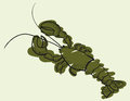 Sketch of a big green lobster illustration Royalty Free Stock Images