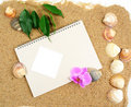Sketch-book and shells and orchid Stock Images