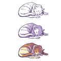 Sketch cat sleeping curled up
