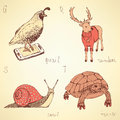 Sketch fancy animals alphabet in vintage style Royalty Free Stock Photo