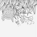Sketch with floral ornament Royalty Free Stock Photo