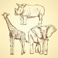 Sketch giraffe, elephant, rhino, vector background Royalty Free Stock Photo