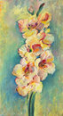 Sketch gladioli gladiolus drawn by oil paints Royalty Free Stock Images