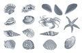 Sketch Ocean Nature Set