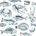 Sketch seafood seamless pattern. Oyster salmon lobster shellfish. Hand drawn seafoods vintage vector background