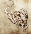 Sketch of tattoo art, modern dragon Royalty Free Stock Photography