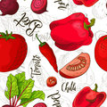 Sketched vegetables background. Vector seamless pattern with beet and chilli and tomato and pepper. Hand drawn