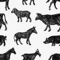 Sketches farm animals Royalty Free Stock Photo
