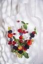 Skewer of berries Royalty Free Stock Photo