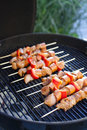 Skewers Royalty Free Stock Images