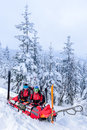 Ski patrol with rescue sled injured woman helping women snow forest Royalty Free Stock Images