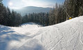 Ski piste among the spruce forest in sunny day Royalty Free Stock Photo