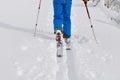 Ski touring on fresh snow Royalty Free Stock Photo