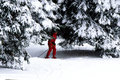Skier, Hunter Mountain Royalty Free Stock Photo
