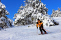 Skier on a slope Royalty Free Stock Photo