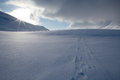 Skiing track on the Kungsleden Stock Images