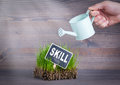 Skill concept. Fresh and green grass on wood background Royalty Free Stock Photo