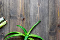 Skin care. Aloe vera leafs and spa salt on wooden background top view copyspace