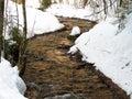 Skogliten vik som flödar i vinter Royaltyfria Foton