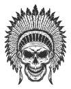 Skull of american indian