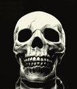 Skull on black background Royalty Free Stock Photos