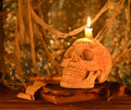 Skull with book on blurred background creepy human burning candle old Royalty Free Stock Photos