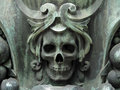 Skull In The Cemetery