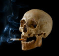 Skull with a cigarette human smoking on black background Stock Photo