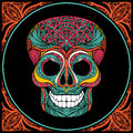 Skull with colored pattern human ornament and lace frame vector illustration Stock Photography