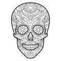 Skull coloring book for adults vector Royalty Free Stock Photo