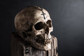 Skull with crucifix still life photography on tree stump necklace at forehead Stock Photography