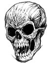 Skull Drawing line work vector. Royalty Free Stock Photo